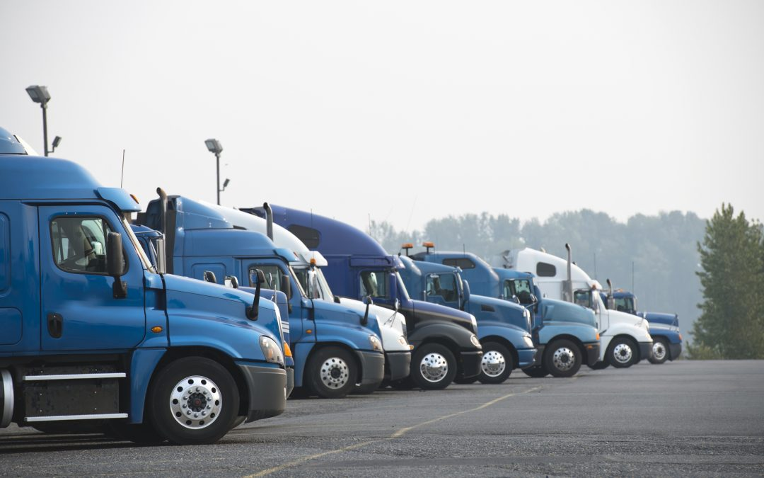 ATO arrears not an issue for fleet expansion